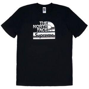 Supreme The North Face Metallic Logo T-Shirt Black